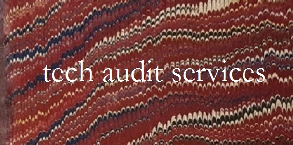BetaWatch tech audit services established in 1999